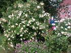 devillerspoultreniezjacquesetpascale_jardin17-6-.jpg