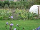 oliviercanlers_jardin.jpg