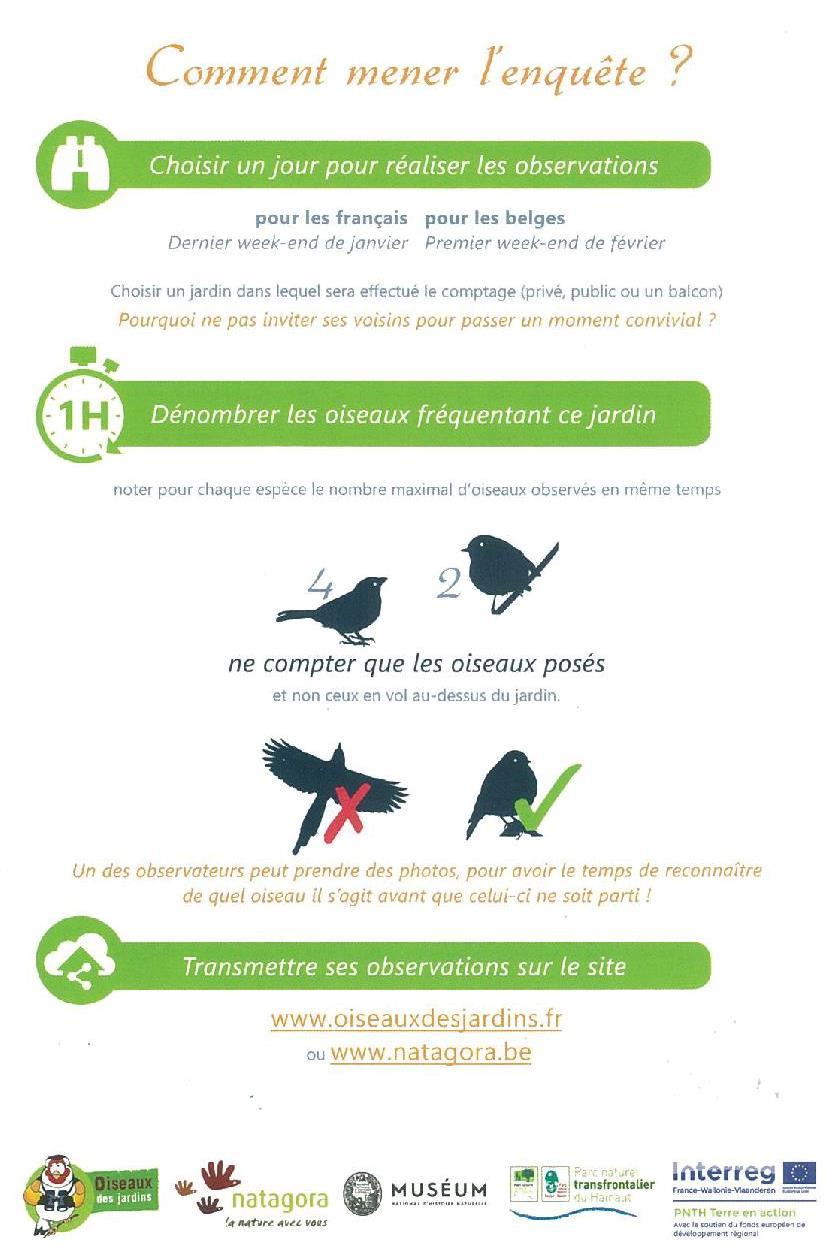 image oiseauxrecadre.jpg (0.1MB)